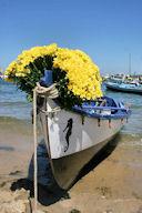 Arcachon bateau décoré pour la fête du fleuve -  photo 33-bordeaux.com