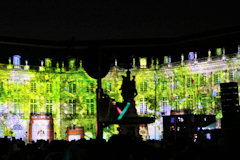 Bordeaux fête le vin - projection place de la Bourse