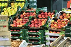 Grossiste fruits au marché de Brienne à Bordeaux |  photo 33-bordeaux.com