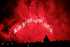 Bordeaux feu d'artifice sur la Place des Quinconces | Photo Bernard Tocheport